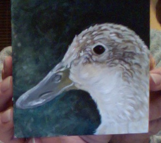 duck painting 11-13-15